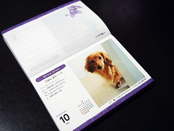 felissimo-calendar2015 (10)