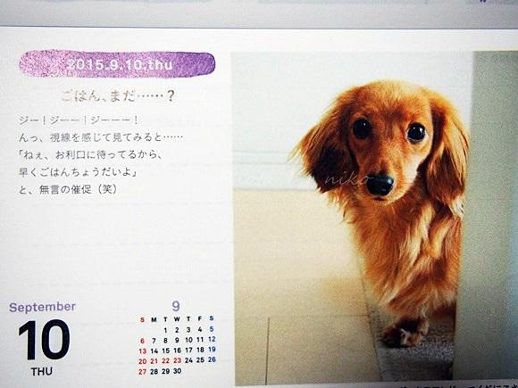 felissimo-calendar2015 (11)