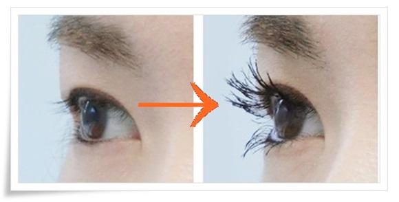 cellula-eyelash-1