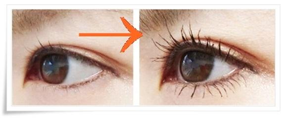 cellula-eyelash-2