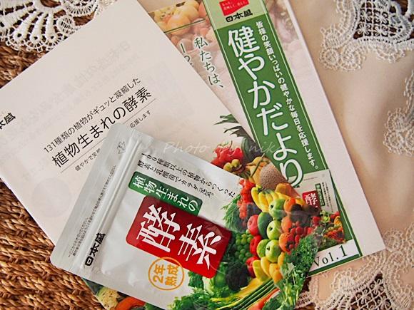 nihonsakari-kouso (4)