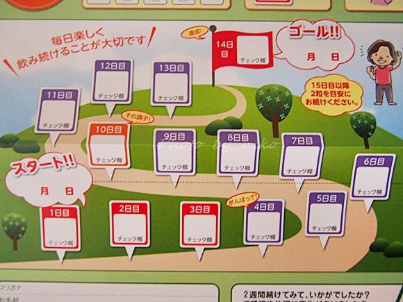 nihonsakari-kouso (5)