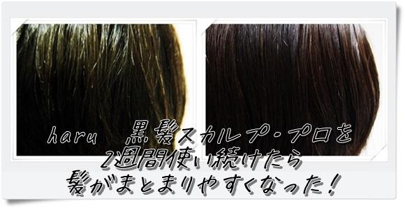 haru-scalp-pro-shampoo (12)