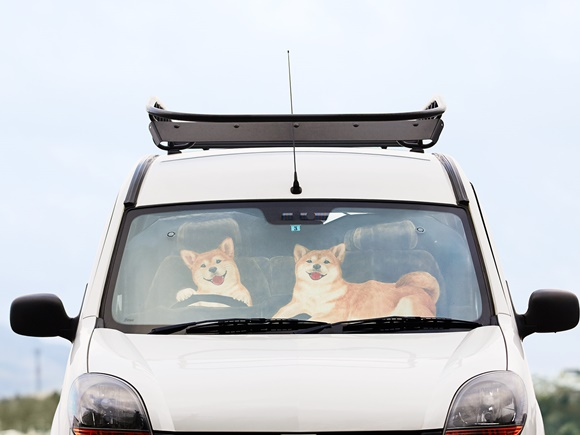 felissimo-sunshade-car-dog (1)