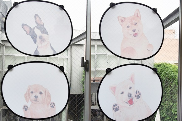 felissimo-sunshade-car-dog (15)