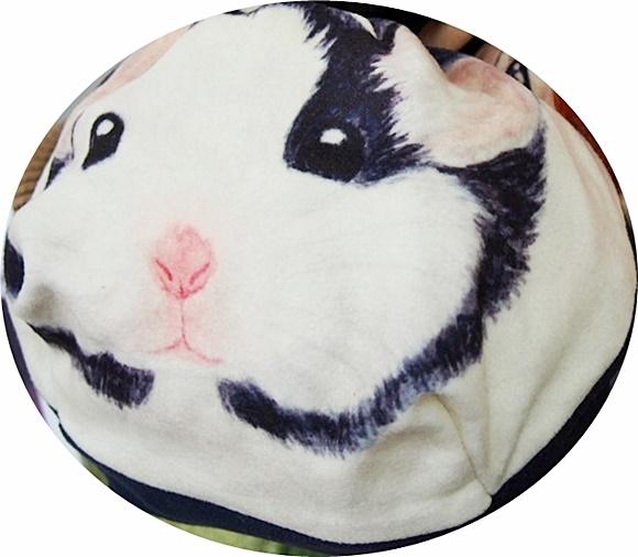 felissimo-kincyaku-Hamster-risu (5)