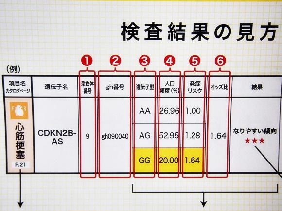 dhc-gene-test-data-idenshi-3