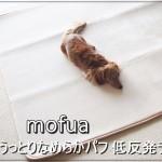 mofua-19