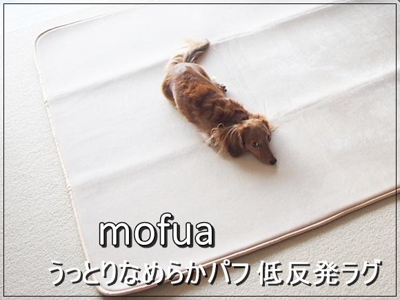 低反発ラグマットとクッションの人気おすすめご紹介!mofua モフアシリーズ